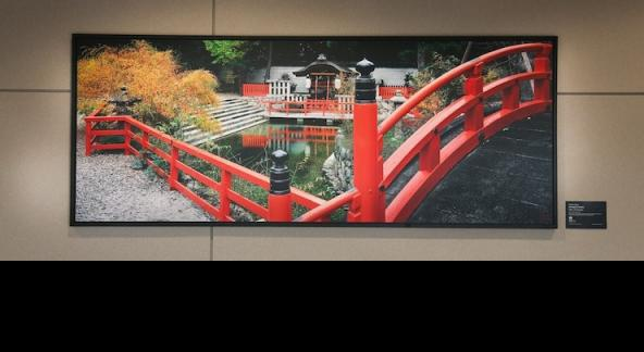 """Japanese Gardens"" Photography"